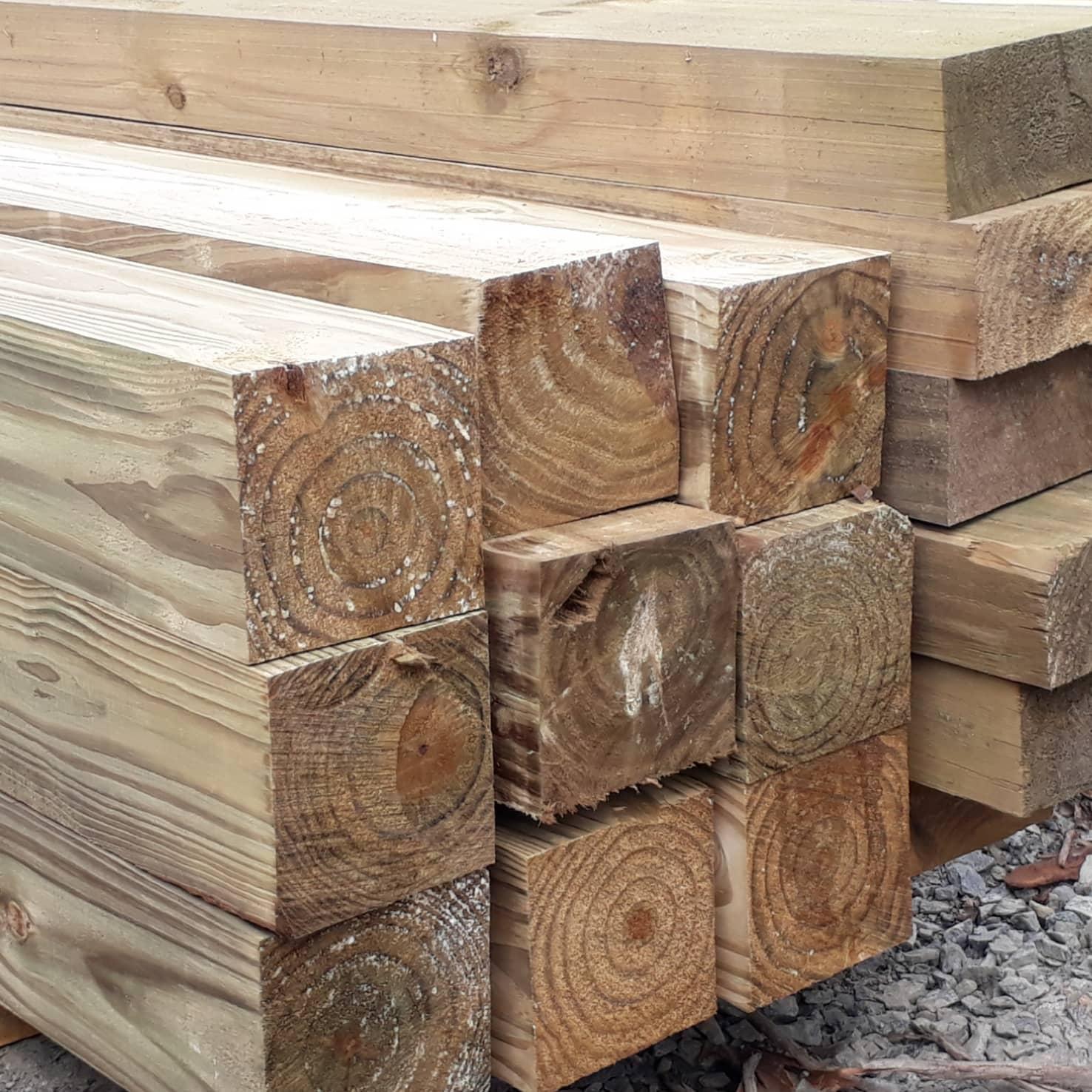 Pinus Tratado 15x15