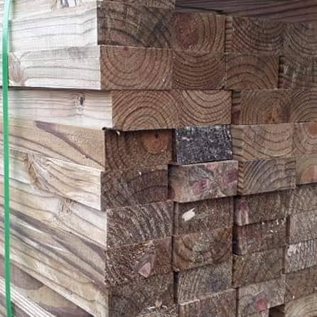 Caibro de Pinus Tratado